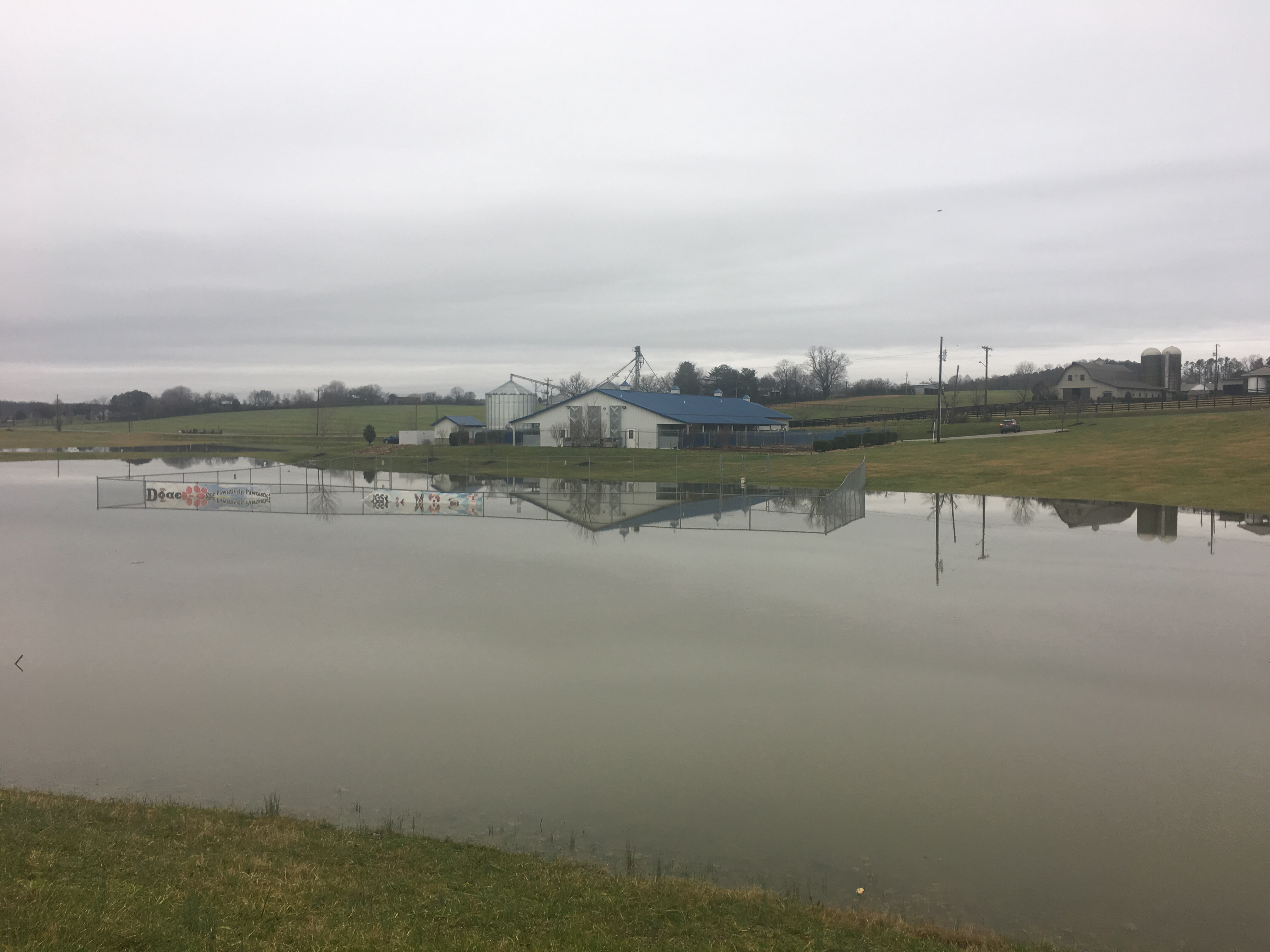 Flooding at AllDogs Canine in Jefferson City - The lower kennel field that would allow dogs to be outside had flooded. That leaves their dogs to stay inside.