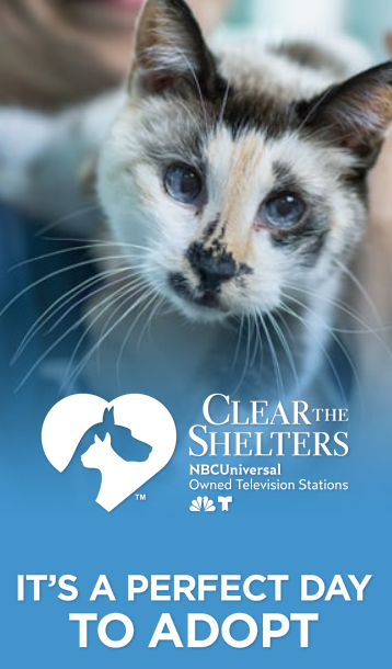 Clear the Shelters - Hundreds of animals across East Tennessee are looking for a forever home. Many NBC and Telemundo owned stations are partnering with local animal shelters to host Clear the Shelters, a nationwide push to encourage pet adoption. #CleartheShelters